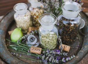 gin-botanicals