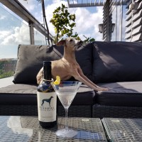 Review: Windspiel Premium Dry Gin