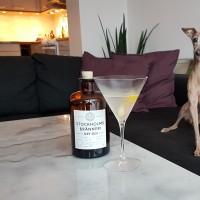 Review: Stockholms Bränneri Dry Gin Navy Strength