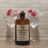 Review: Stockholms Bränneri Dry Gin